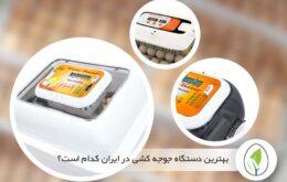 بهترین ماشین جوجه کشی ایرانی و خارجی