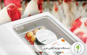 ماشین جوجه کشی برای مرغ
