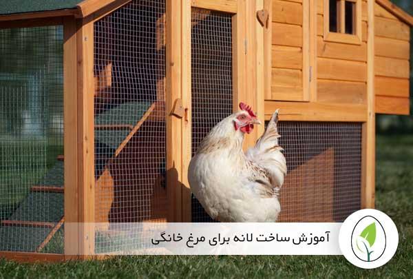 آموزش ساخت لانه برای مرغ خانگی
