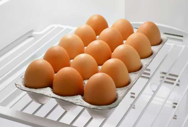 آیا میتوان تخم نطفه دار را در داخل یخچال قرار داد - اندیشه سبز