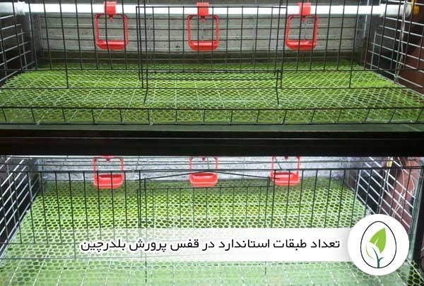 تعداد طبقات استاندارد در قفس پرورش بلدرچین - چیکن هچ