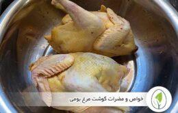 خواص و مضرات گوشت مرغ بومی - چیکن هچ