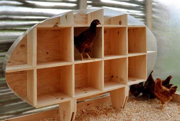 ساخت آشیانه مرغ