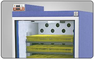 برد دستگاه جوجه کشی بلدرچین دماوند dq170 - چیکن هچ
