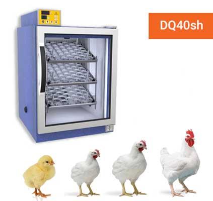 ویژگی های دستگاه جوجه کشی دماوند dq40sh-چیکن هچ