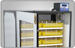 شانه های دستگاه جوجه کشی 210 تایی فاخته - چیکن هچ