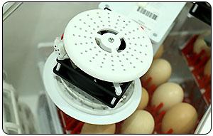 سیستم رطوبت دستگاه جوجه کشی ایزی باتور دو - چیکن هچ
