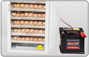 برق دستگاه جوجه کشی گالا پلاس - چیکن هچ