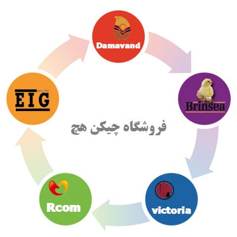 قیمت انواع دستگاه جوجه کشی ایرانی و خارجی در فروشگاه چیکن هچ-چیکن هچ